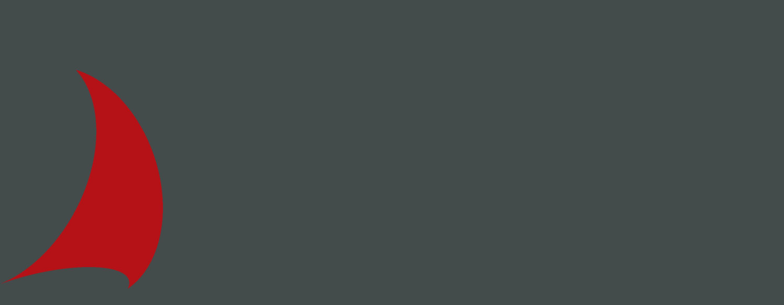 Offizieller Partner der Hochschule für angewandtes Management